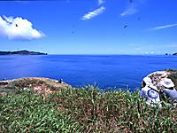 南崎より海原を見渡す