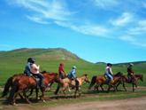 モンゴル乗馬